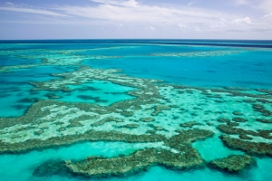 AUSTRALIA, Queensland, Whitsunday Coast, Great Barrier Reef. Aerial of the Great Barrier Reef by the Whitsunday Coast.