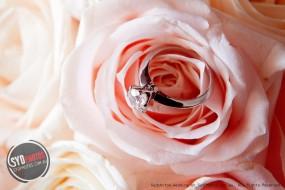 【SYDPHOTOS教你】三步找到属于你们的铂金戒指