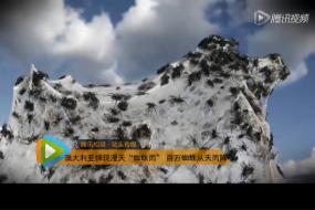 """【新闻】澳洲百万蜘蛛从天而降成""""蜘蛛雨""""西游记盘丝洞简直弱爆了"""