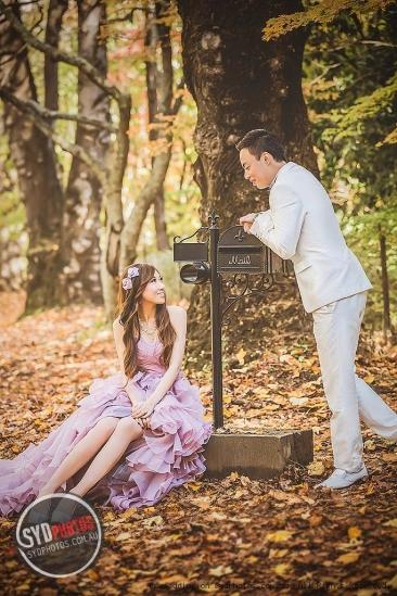 你的瞬间,我来记录 — Sydphotos 专业悉尼婚纱摄影