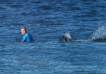 【新闻】澳大利亚冲浪冠军比赛中遭鲨鱼袭击海中搏斗逃生,堪比好莱坞大片