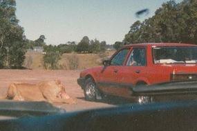 【怀旧】属于70和80后的美好记忆!悉尼那些不复存在的游乐园