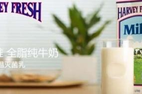 【震惊】澳洲纯牛奶在香港被紧急召回:细菌超标1万倍