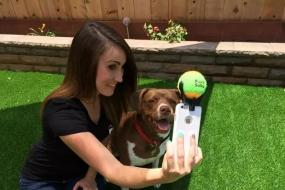 【萌宠】为了让狗狗们配合拍照 狗主人们出了新招!太实用了…