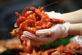 圣诞遇上20周年庆,Sydney Fish Market 36小时海鲜马拉松盛宴后天开始!