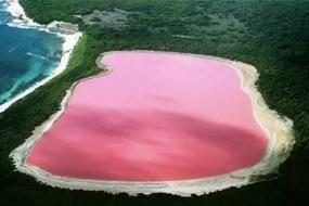 风景|澳洲粉色湖,治愈少女心