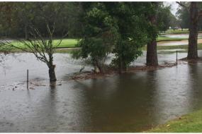 【天气】大暴雨又来!悉尼气象局发布多次警报,伙伴们请做好心理准备…