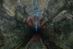 悉尼海伦斯堡隧道群:蓝色萤火虫点亮百年古老隧道
