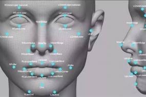 悉尼街道将安人脸识别摄像头 悉尼安全多了