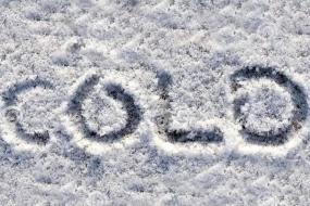 零下2度!悉尼一夜入冬,创30年最低温记录!:冻死宝宝啦!