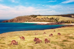澳洲网友心目中最美丽的五个小岛